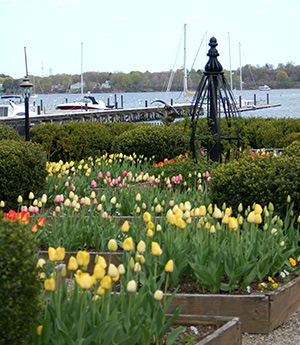 Seaside Gardens with flowers at House of Seven Gables